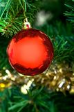 Ball on a Christmas tree Royalty Free Stock Images