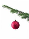 Ball on Christmas tree. The red ball on Christmas tree stock image