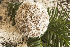 Ball of coconut and chocolate Royalty Free Stock Photos