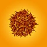 Ball in den Blättern in den braunen und gelben Herbstfarben Lizenzfreie Stockfotos