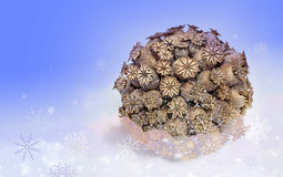 Ball of dried poppy heads with snowflakes Royalty Free Stock Photos