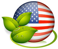 A ball with the flag of the United States and with leaves Stock Photography