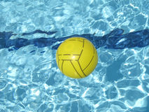 Ball floating on the swimming pool Royalty Free Stock Photos