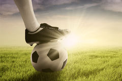 Ball and foot of soccer player on meadow Royalty Free Stock Image