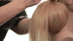Ball formed out of the hair. Hairstyle with shaggy white hair. Close up stock footage