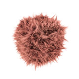 Ball of fur Royalty Free Stock Photo