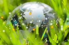 Glass globe ball in light rays on grass background Stock Photography