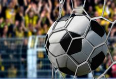 Ball in Goal Net with Cheering Spectators Stock Photos