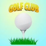 Ball golf course standing on a peg. Tee vector illustration