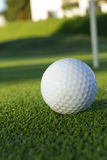 Ball for golf Royalty Free Stock Image