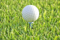Ball of golf on a tee. Stock Photo
