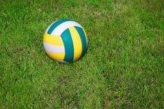Ball on the grass Stock Photos