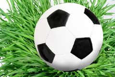 Ball on grass Royalty Free Stock Image