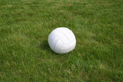 Ball on grass. White volley ball on sports field Stock Images