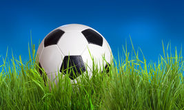 Ball in grass Royalty Free Stock Images