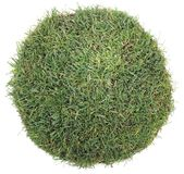 Ball of Grass Royalty Free Stock Images