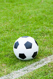 Ball in grass. Royalty Free Stock Images