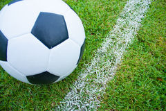 Ball in grass. Royalty Free Stock Photography