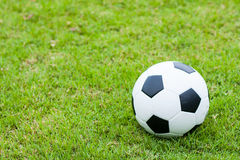 Ball on grass. Royalty Free Stock Photo