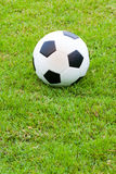 Ball on grass. Stock Images