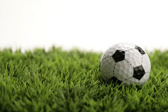 Ball on grass. Golf ball which looks like a soccer ball on green grass Stock Photography