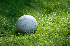 Ball on Grass Royalty Free Stock Photo