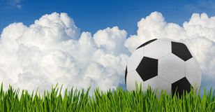 Ball in the grass close up Royalty Free Stock Images