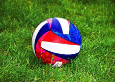 Ball in the grass Royalty Free Stock Photography