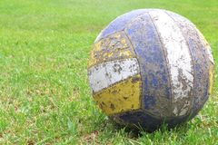 Ball on the grass royalty free stock photos