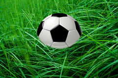 Ball in grass. Ready for fun. Outdoor football Royalty Free Stock Photography