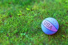 Ball on the grass Royalty Free Stock Photography