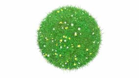 Ball of grass and small flowers