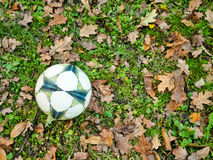 Ball on grass Stock Images
