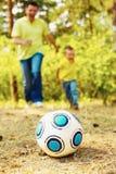 Ball on grassland Royalty Free Stock Photos