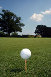 Ball on Green Vertical. Golfball on a tee with tree and sky in the distance Royalty Free Stock Photography