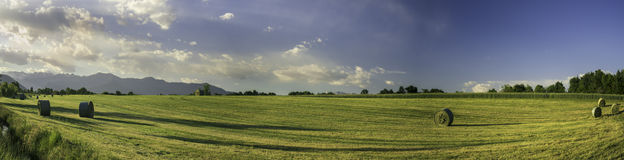 Ball of hay in wide landscape. Ball of hay in landscape tractor Royalty Free Stock Photo