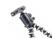Ball head on GorillaPod Royalty Free Stock Photo