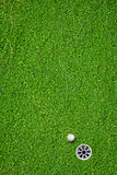 The ball at the hole on the golf course Royalty Free Stock Photo