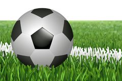 Ball on line in field. Soccer football ball on a whte line of green grass field. Photo realistic grass and classic black and white ball. Grass football wallpaper Royalty Free Stock Image