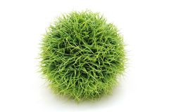 Ball made of grass Stock Photo