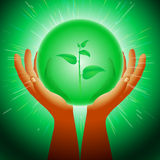 Ball Magic Ecology Plants Hand Flash Light Background Royalty Free Stock Photos