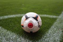 Coronavirus in sport
