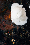 Ball of melted ice cream on black rustic surface. Stock Photography