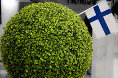 The ball of moss and Finland flag Royalty Free Stock Image