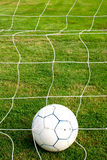 Ball in the net. Stock Photos