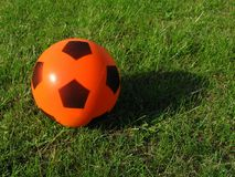 Ball On The Grass Royalty Free Stock Images