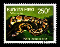 Ball Phyton (Python regius), Reptiles and Amphibians serie, circ. MOSCOW, RUSSIA - NOVEMBER 25, 2017: A stamp printed in Burkina Faso shows Ball Phyton Royalty Free Stock Image