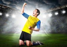 ball player soccer Стоковые Изображения RF