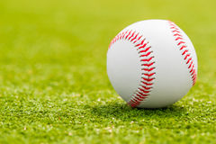 Ball for playing baseball is on the green grass Royalty Free Stock Image