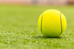 Ball for playing tennis is on the green grass. Macro shot stock photo